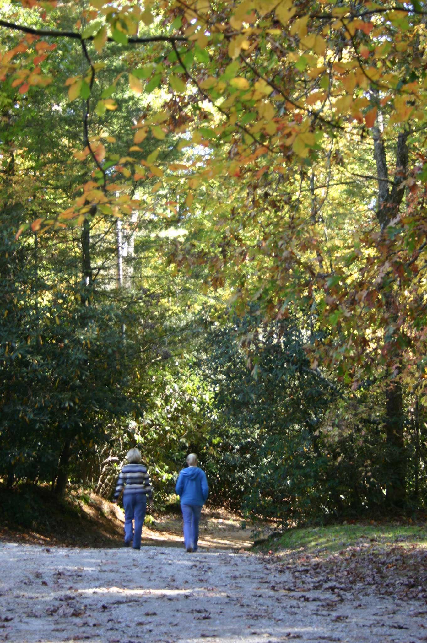 North Carolina Mountain Resort Takes Fall Foliage to New