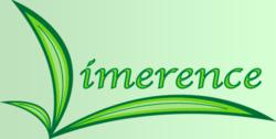 Limerence: Falling in love is a powerful, spontaneous projection of