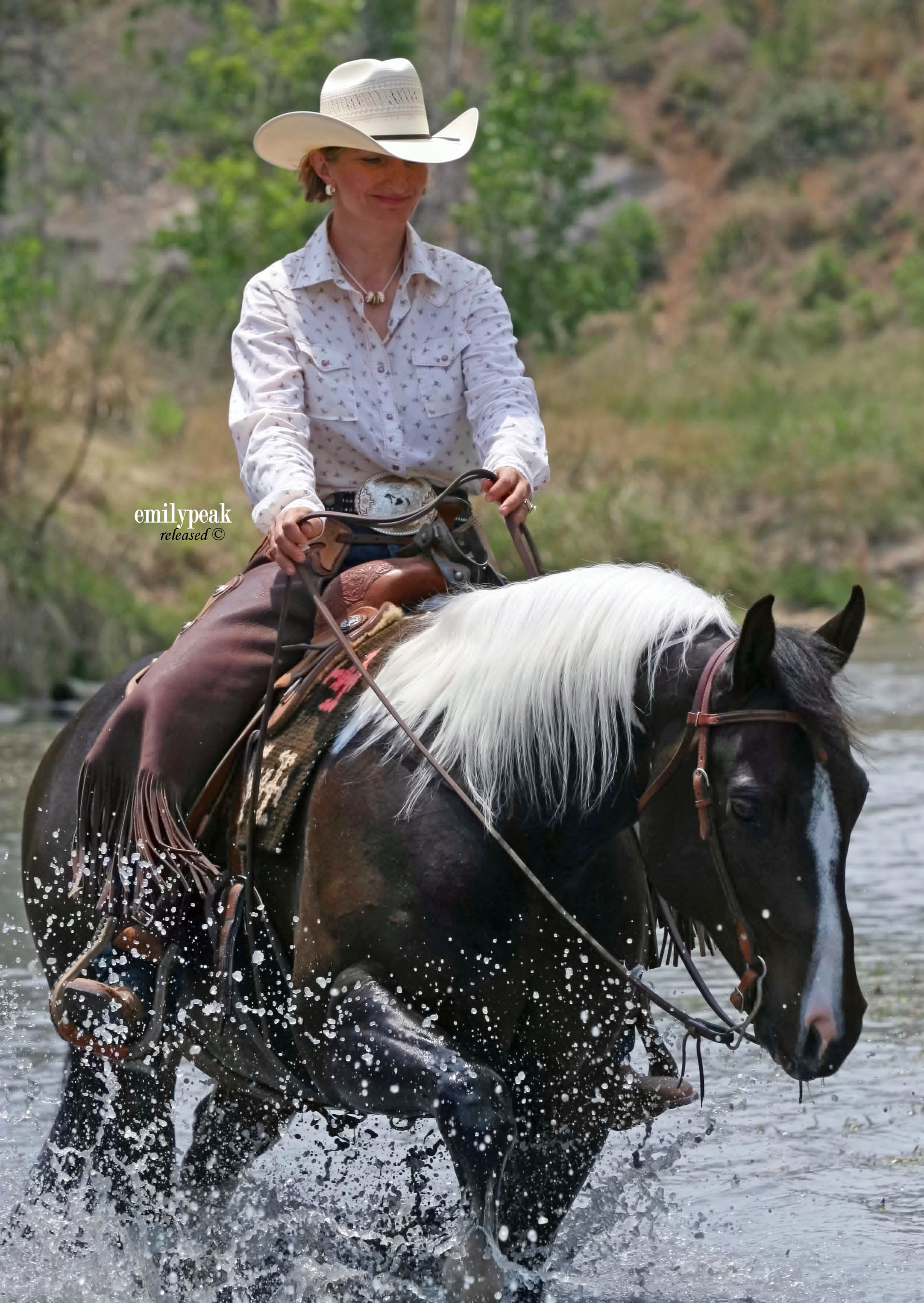Favorite Trail Horse Contestants Turn to Dynamite for Horse Nutritional Support