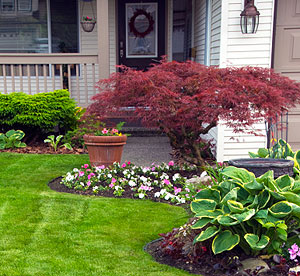 7 foundation landscaping tips
