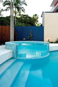 Introductory Brochure on Designing Clear Acrylic Pool ...