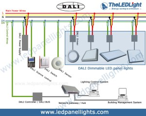 The LED Light (China) Has Just Released Its New DALI