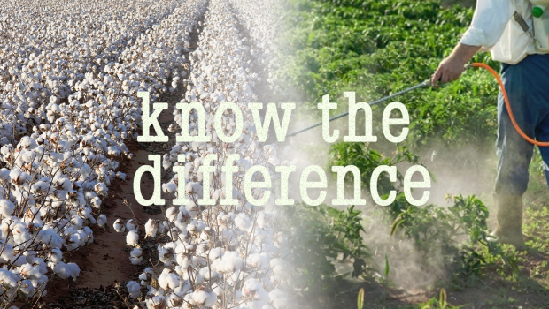 The Best Mattress Compares Conventional and Organic Cotton