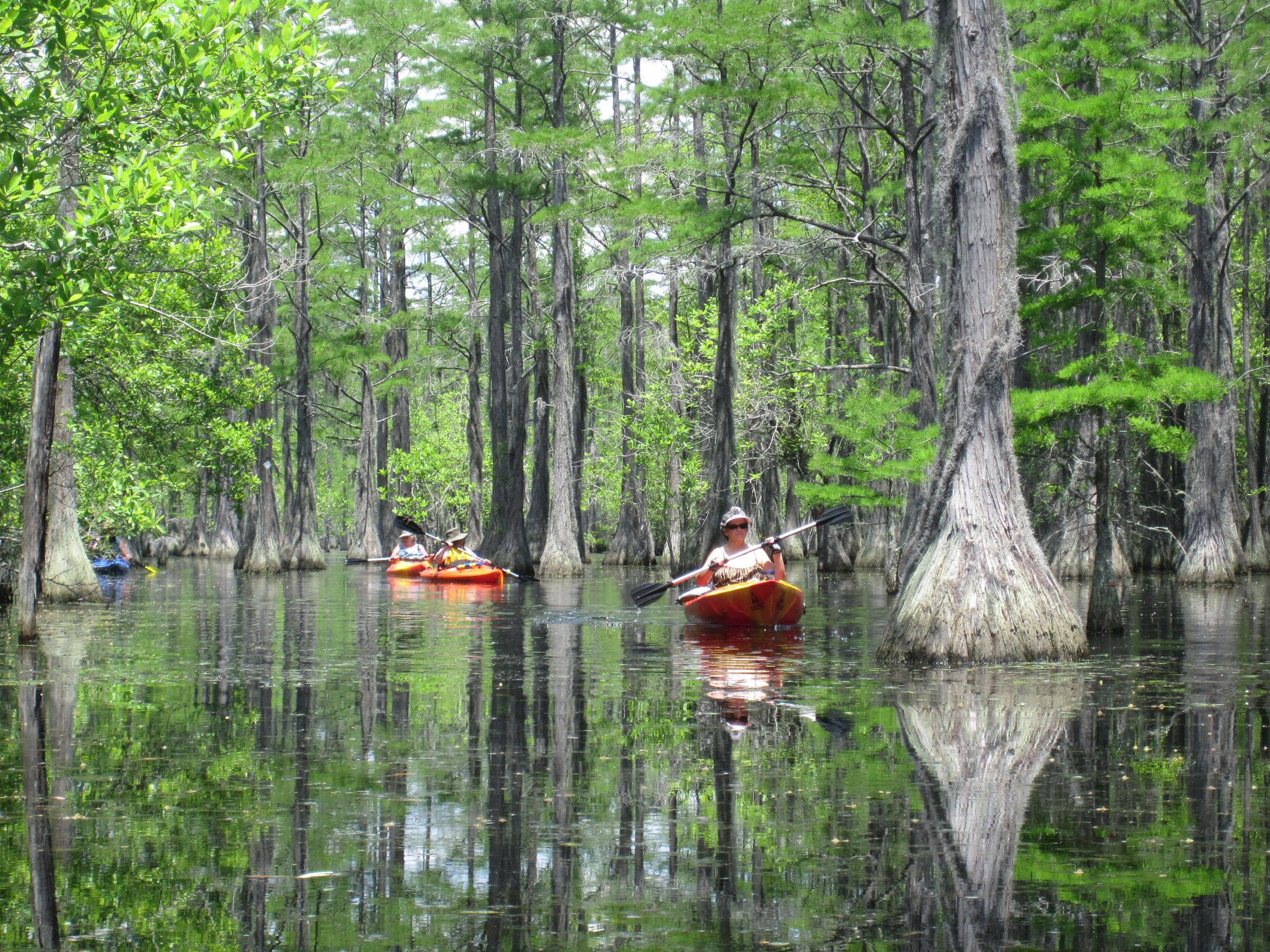 Georgia State Parks Introduces a Spring Break Wildlife Getaway