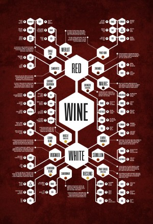 The Wine Diagram Thoroughly Records the Perplexing World