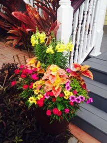 St. Augustine Hotel Wins City Award Container Gardens