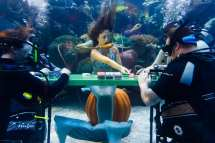 Underwater Poker Game Support Veterans