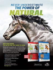 Kemin Animal Nutritional Health Advertising And - Year of