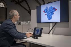 WPI bioinformatics researcher Dmitry Korkin examines a 3D model of a key protein of the novel coronavirus.