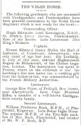 1914 WW1 week 6.6 The Welsh Horse