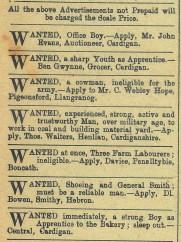 1916 week 101 Advertisements