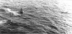 B-29 was forced down at sea