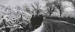 German relieve detachment Siegfried Line