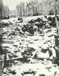 remains of the Russian 44th motorized Infantry Division
