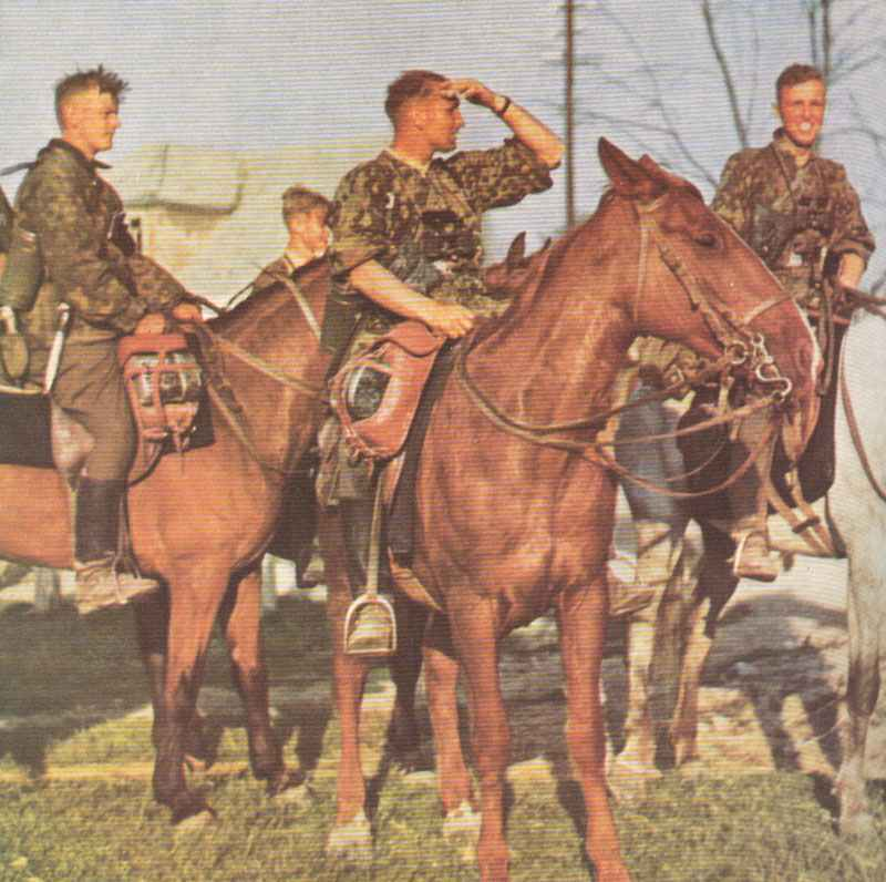 Troopers of 8 SS Cavalry division