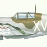 Model of M.S.406C-1
