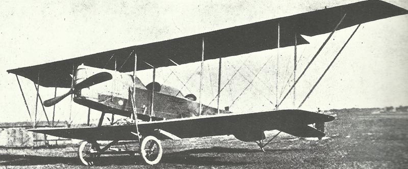 Earlier Albatros type.