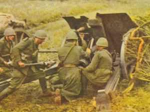Italian artillery in action