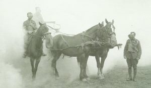 horse respirators