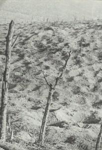 soil of Verdun