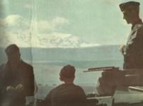Panzers at the Caucasus