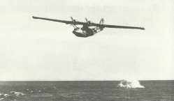 Attack of a Catalina
