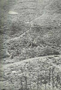 Shelled village near Ypres