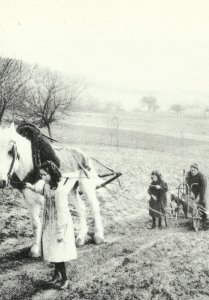 Women and children plowing in France