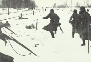 German soldiers pursue Red troops.