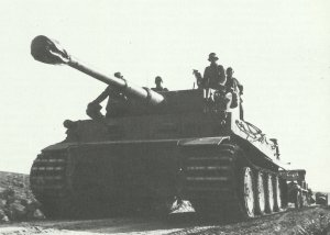 Tiger tanks in Africa