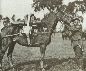 packaging of a Vickers machine-gun on a horse