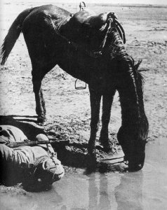 Russian soldier and his horse drinking