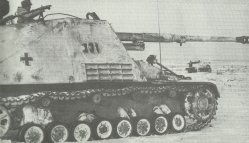 German Hornisse tank destroyers
