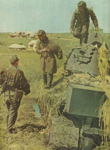 crew of a Russian tank surrenders