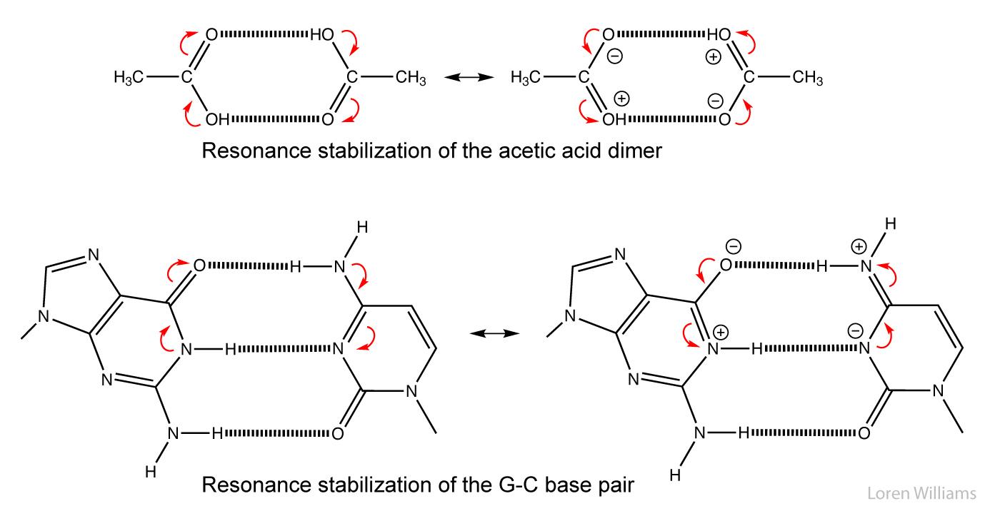 hight resolution of cg base pair