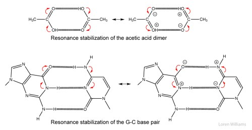 small resolution of cg base pair