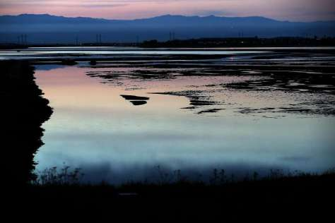 Bayfront Park in Menlo Park, Ca., is home to the South Bay Salt Pond restoration project which is seen at sunrise in on Wed. April 19, 2017. Photo: Michael Macor, The Chronicle