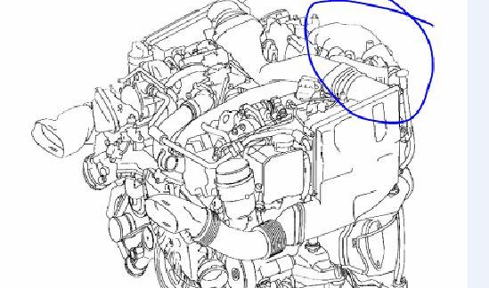 Mercedes clk 320 cdi Felercode p 1408, Abgasrückführung (EGR)