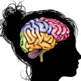 Harnessing the Incredible Learning Potential of the Adolescent Brain