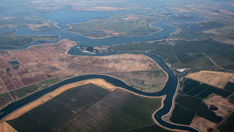 Why California's Largest Estuary No Longer Works for Wildlife | Drought Watch | KQED Science