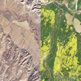 Here's What California's Wildflower 'Super Bloom' Looks Like From Space
