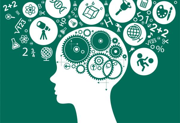 Role Of Metacognition In Learning And Achievement