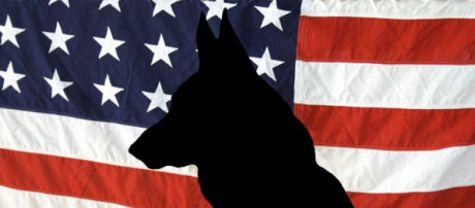 Five Famous War Dogs  WW2 Gravestone