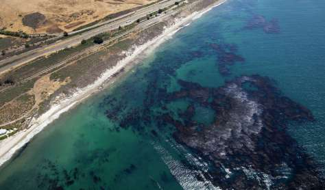 The oil sheen and oil-soaked kelp befoul the ocean off the Southern California coast as cleanup continues. Photo: Brian Van Der Brug / McClatchy-Tribune News Service / Los Angeles Times