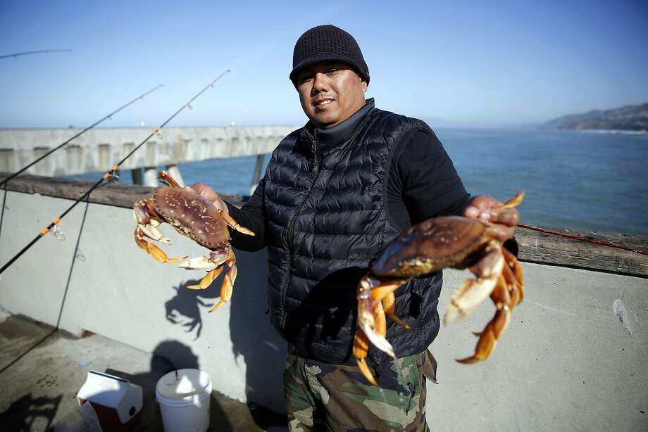 The only way to get local Dungeness crab Catch them