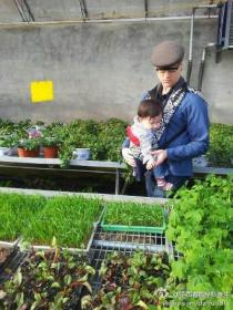 tootoo organic farm beijing