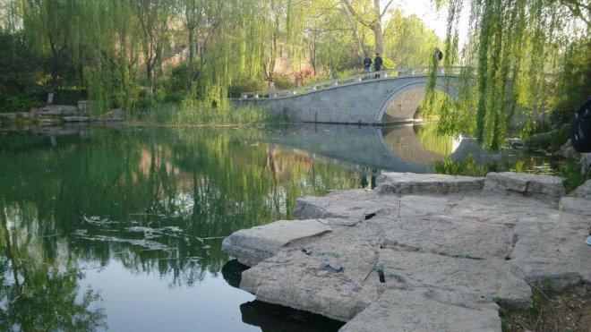 大明湖的小桥