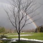 RDW Double Rainbow