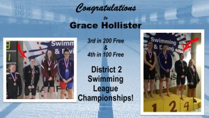 Hollister Qualifier in District 2 Swimming