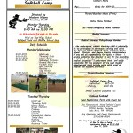 Wayne County Commissioners Softball Camp to be held June 17, 2019